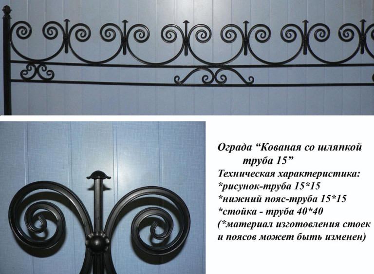ograda-kovanaya-so-shlyapkoj-tr