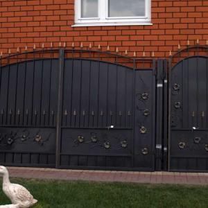 Ворота и калитка Лоза